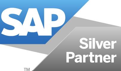 ZPARTNER is SAP Partner.