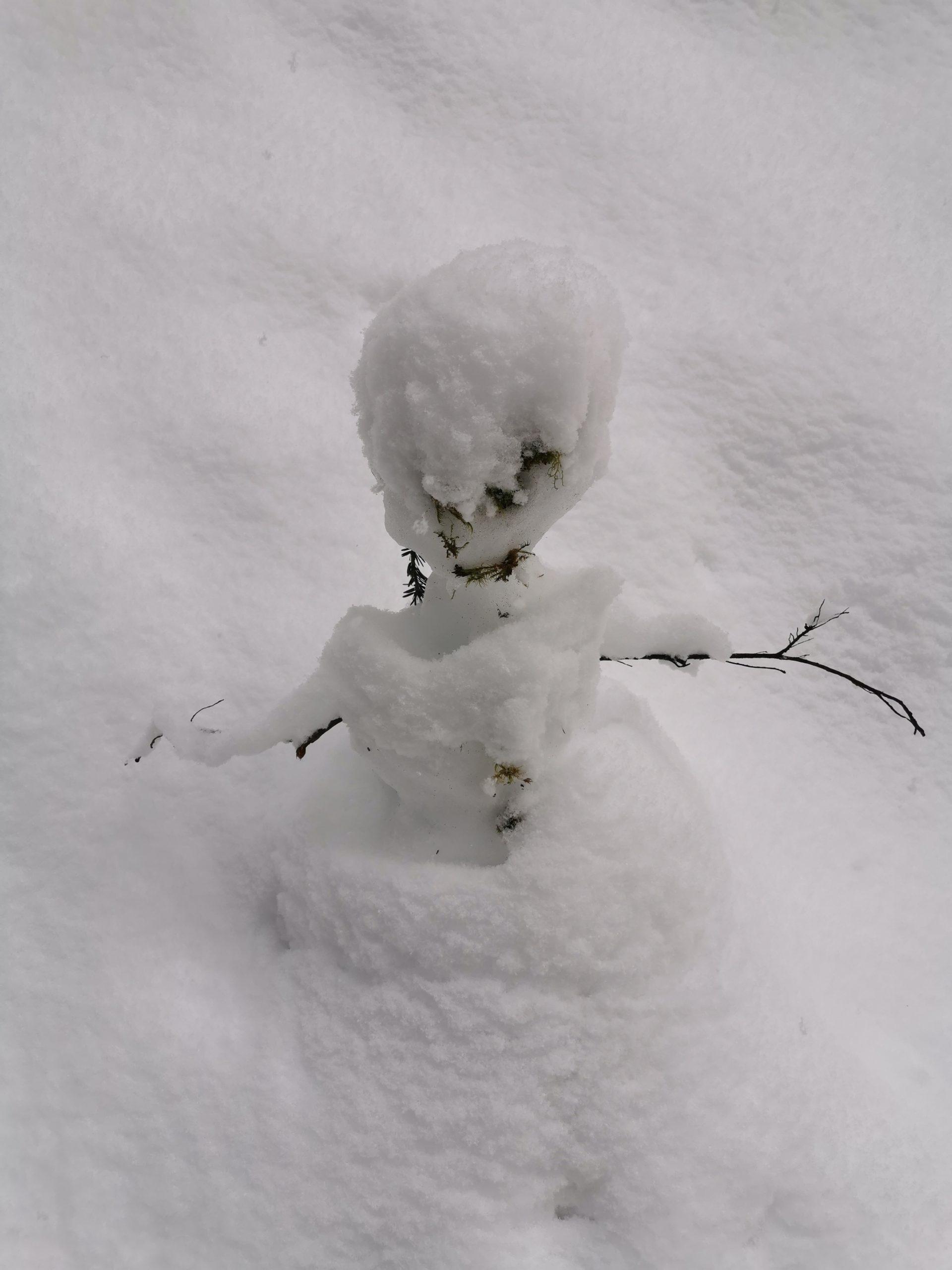 Ein kleiner Schneemann.